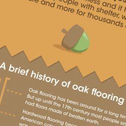 Oak Flooring infographic