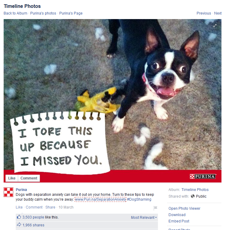 Purina's #dogshaming facebook page