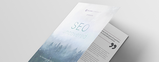 SEO-uncovered-540x213