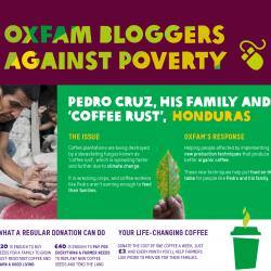 Preview of Oxfam infographic seo content marketing