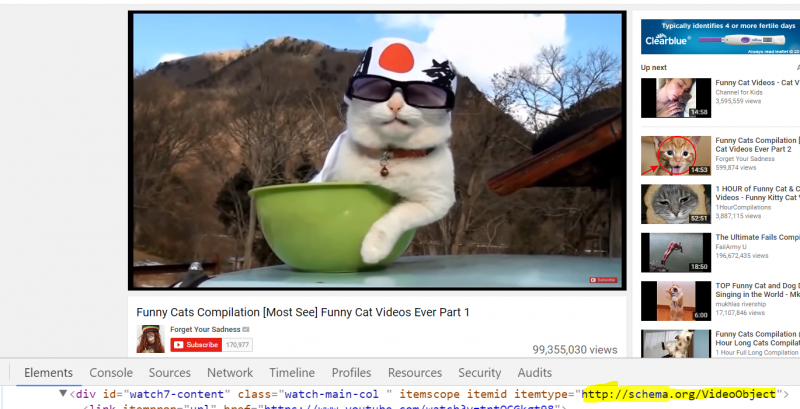 funny cats video schema markup