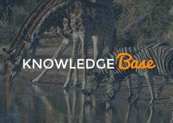 local SEO knowledge base