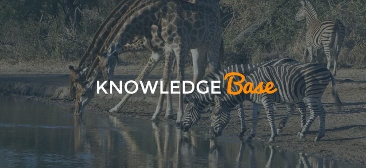 local SEO knowledge base
