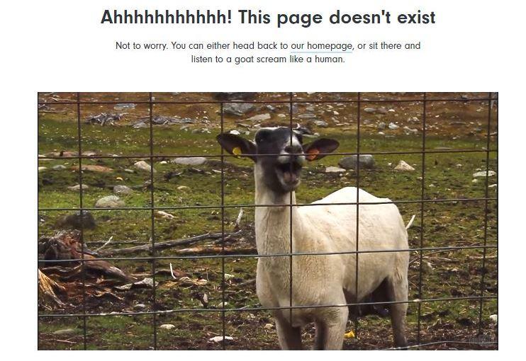 screaming goat 404