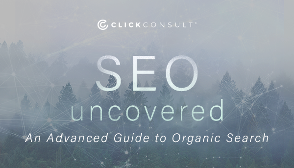 SEO Uncovered ebook download