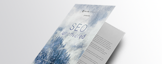 SEO UNCOVERED: ADVANCED GUIDE TO ORGANIC SEARCH CHAPTER 4 - RELATIONSHIPS
