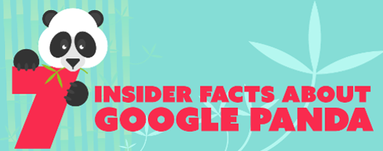 7 Insider Facts About Google Panda