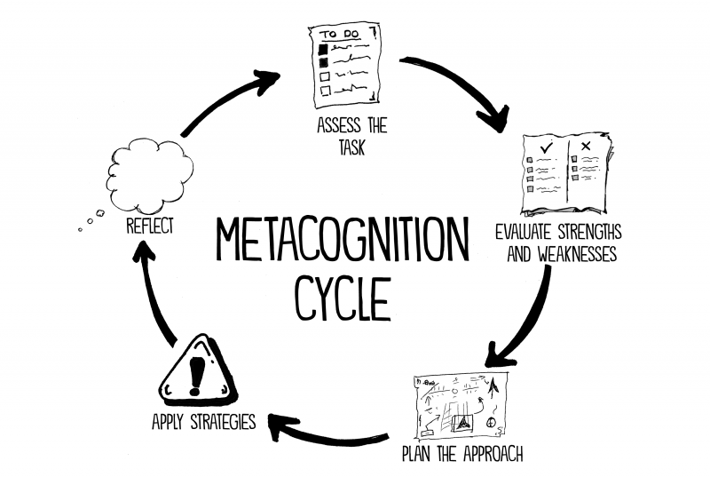 metacognition-cycle