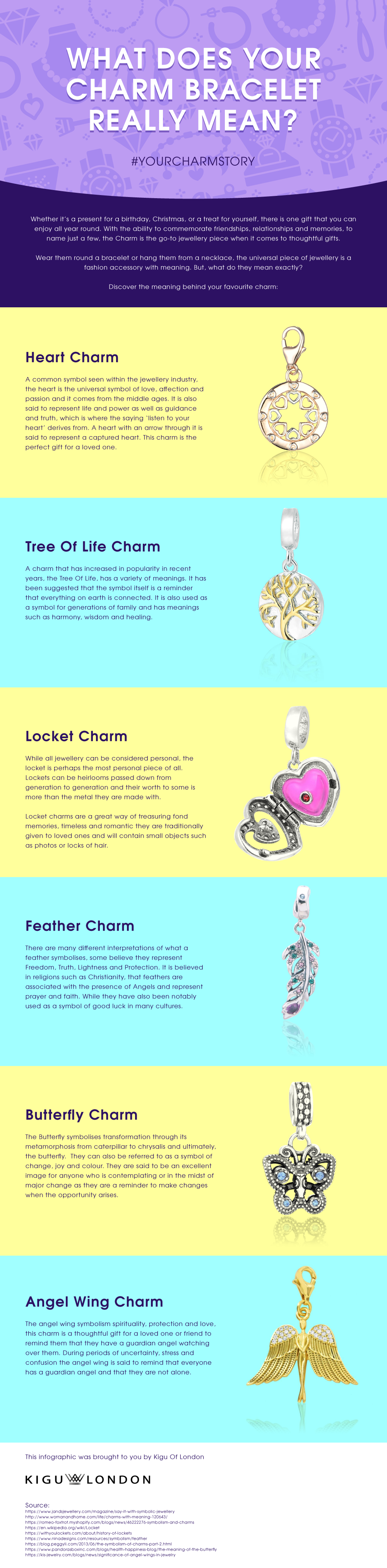 What-Does-Your-Charm-Bracelet-Really-Mean - Infographic.png - (V2)