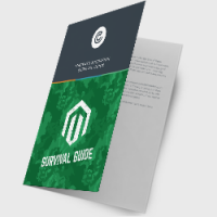 Magento-Migration-Survival-Guide-Top-level-eBook-landing-page-image