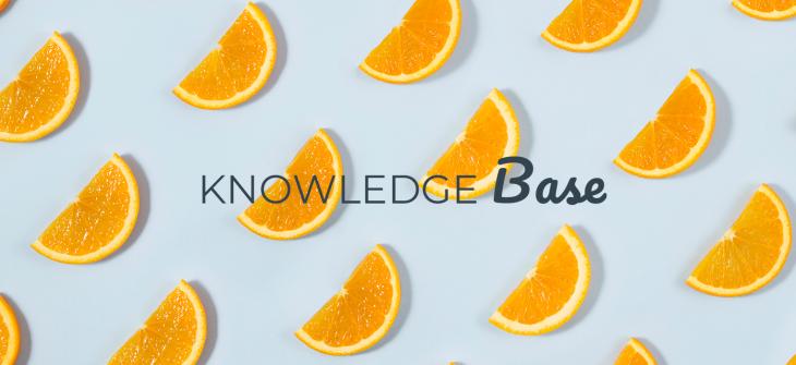 knowledge-base google freshness update
