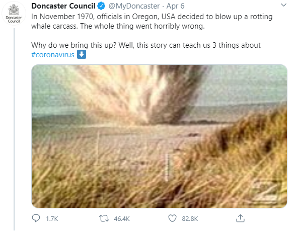 doncaster council whale story