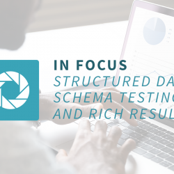 In Focus  – Structured Data, Schema Testing and Rich Results